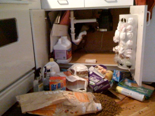 Calamity in the kitchen.